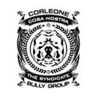 corleonebullygroup_fat
